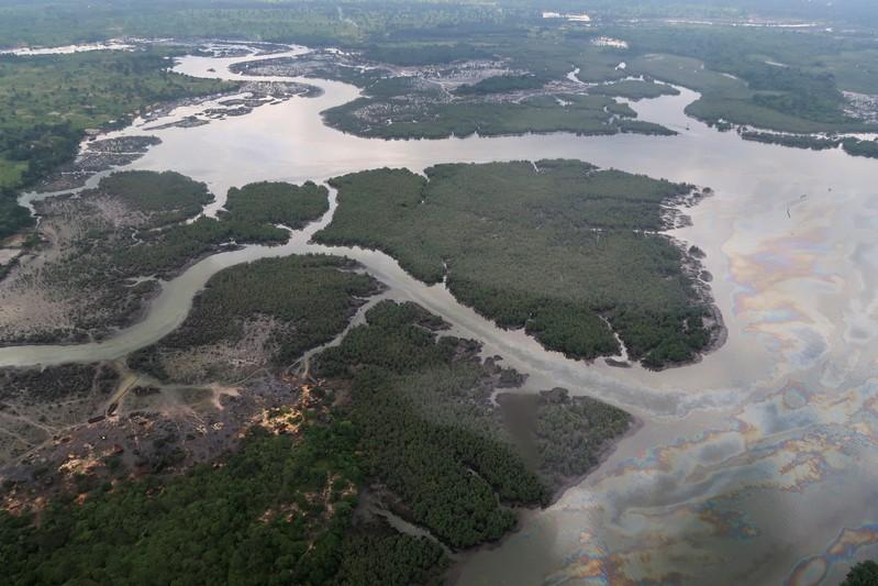 Overview of Niger Delta